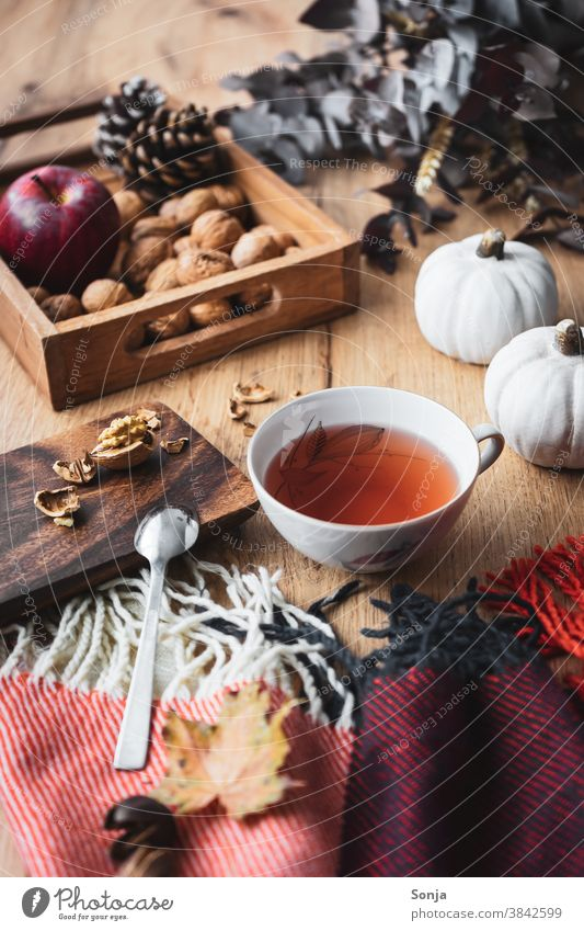 A cup of tea on an autumnally laid table Tea Cup Hot drink Still Life Wool blanket hygge Relaxation Autumn Deserted Beverage Winter Morning Weekend