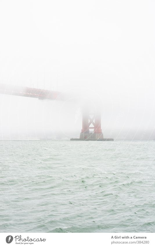 shrouded Environment Nature Summer Bad weather Fog Bay San Francisco San Francisco bay Golden Gate Bridge USA Town Port City Outskirts Tourist Attraction