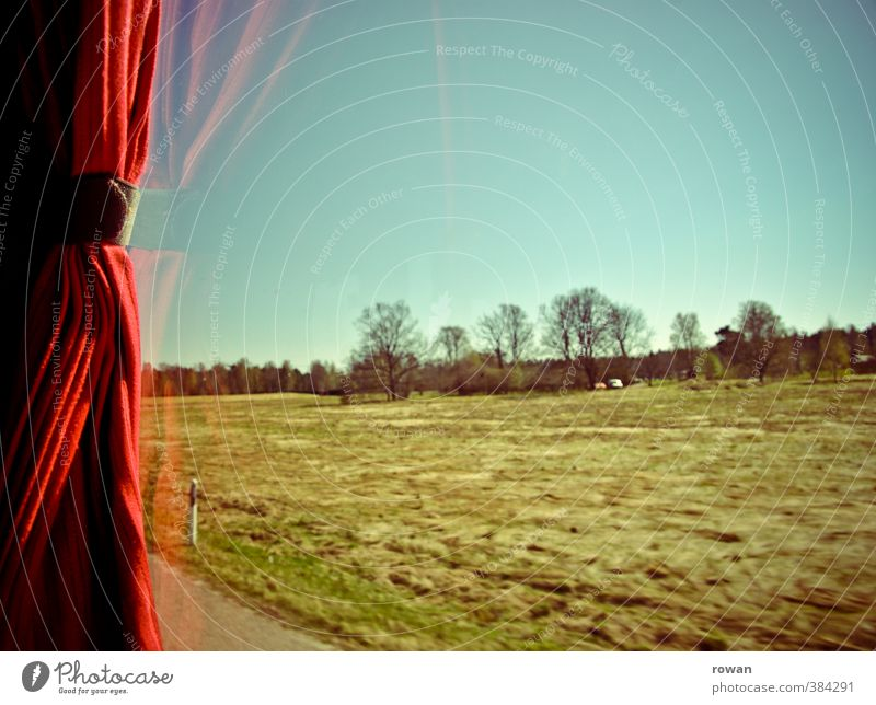 window seat in the bus Landscape Garden Meadow Field Forest Transport Means of transport Passenger traffic Bus travel Street Adventure Beginning Speed