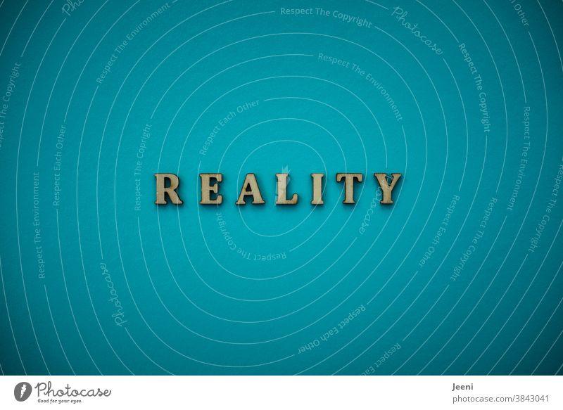REALITY - Reality reality Really actuality fact Fact Turquoise Flashy Bright Colour photo Illuminate Bright Colours President Election campaign trump Americas