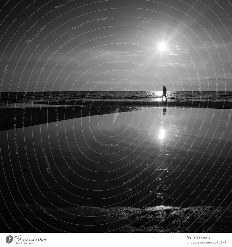 lonely woman walking by Baltic sea beach in midsummer sunset over the water. Black and white. Everyday life anonym anonymous back behind evening female go going