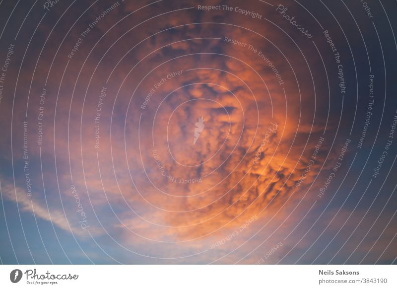 impressive beautiful orange curly cloud in blue sky in golden sunset Abstract air background beam beams beauty bright burst cloudscape cloudy color concept dark
