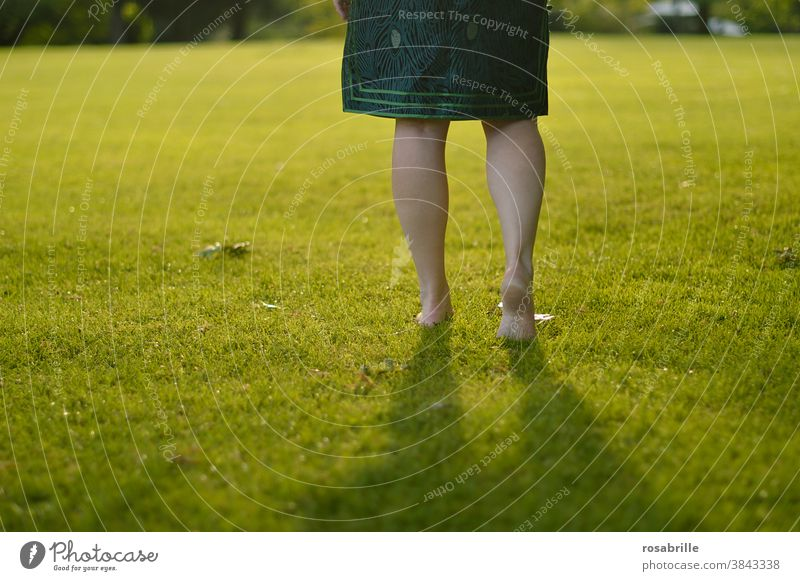 Legs of a woman walking barefoot across a soft lawn with back light Woman Barefoot Going Lawn Green surface open space Places stroll Hiking confident