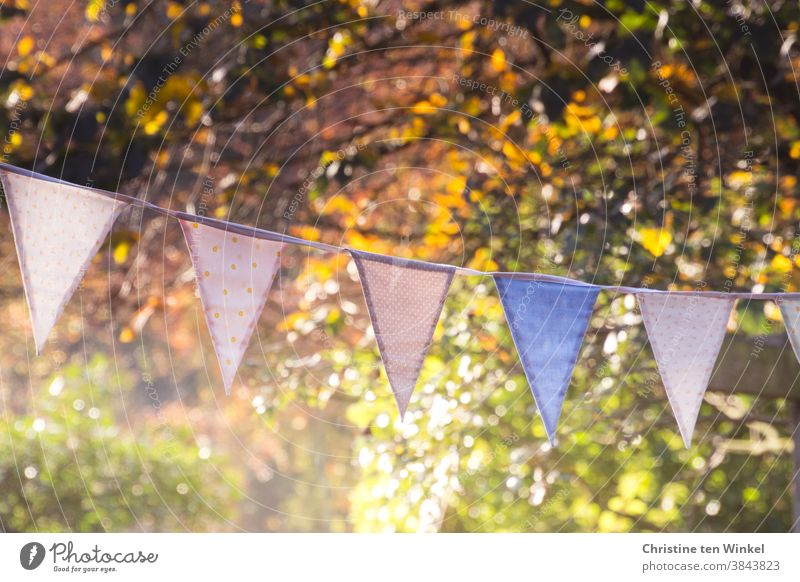 Colourful pennant chain in front of autumnally coloured trees and bushes on a sunny autumn day with low sun and light reflections Autumn Autumnal