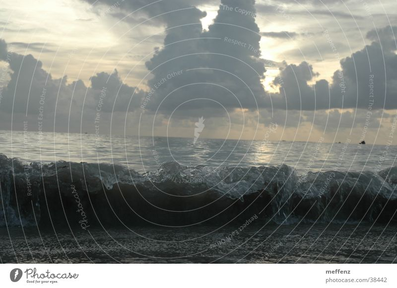 big wave Waves Ocean To break (something) White crest Beach Gale