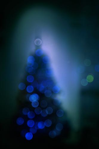 Our Christmas tree at the market is already up! Christmas tree decorations clearer blurred hazy blurriness bokeh Christmas & Advent Dark Night Christmassy