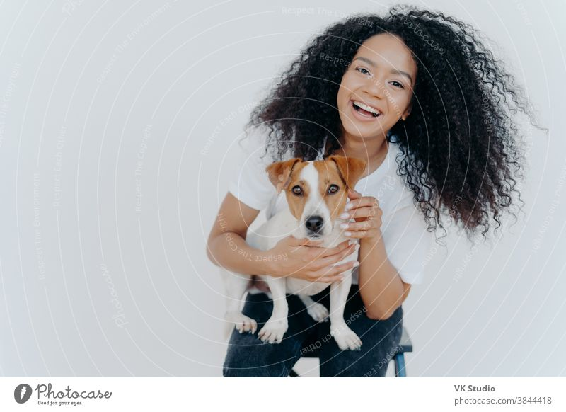 Portrait of joyful curly girl petting her dog, rejoicing buying jack russell terrier, smiles broadly, plays with animal, wears casual clothing, isolated over white background, enjoys good day
