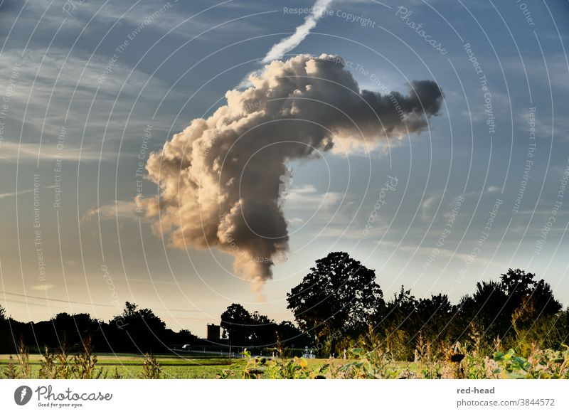 dramatic cloud from the cooling tower with side light, blue sky and evening landscape genie in the bottle Dramatic vivacious Evening trees Sky Landscape magical