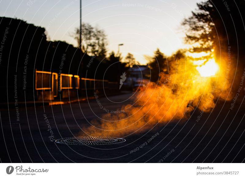 Gold Flatulence let off steam Haze Gully Autumn Exterior shot Smoke Steam Deserted Sunrise Sunrise - Dawn Fog Light Back-light sunshine Misty atmosphere Smoky