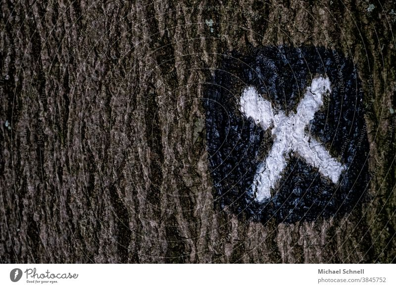 Hiking trail: signs hiking trail trail marking X Lanes & trails off Road marking Groundbreaking Trend-setting Direction Orientation Signs and labeling Clue