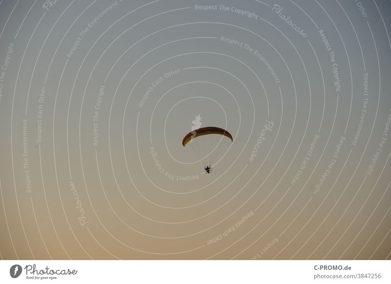 Paraglider pilots in the evening sky against the light paraglider pilot Paramotor Sky Evening Flying Backpack motor Aircraft