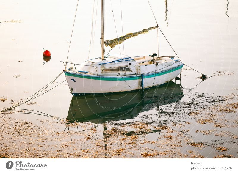 small sailboat moored in port, ploumanach-france white boat sea quaid coast village calm shadow float brittany europe float up yacht sailer sailing ship