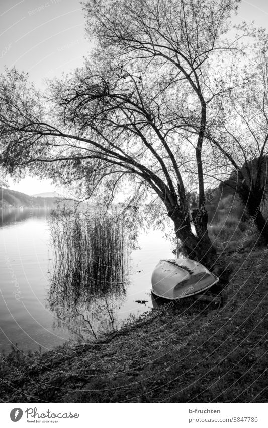 Boat lies on the lake shore, black and white photography Lake Lakeside Austria Autumn Landscape Nature Water Exterior shot Environment Sky Calm Deserted Idyll