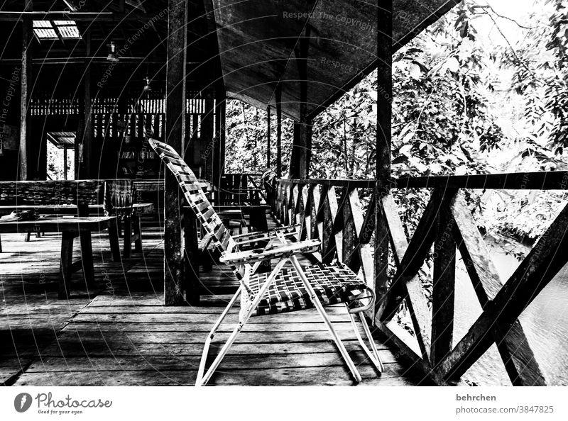 tell stories Black & white photo Impressive Exterior shot Wanderlust Adventure Freedom Borneo Malaya Authentic Iban vacation travel Far-off places Sarawak