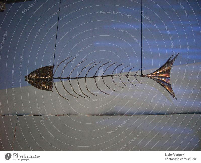 Art Environment Fish Leisure and hobbies Sculpture Fish bone