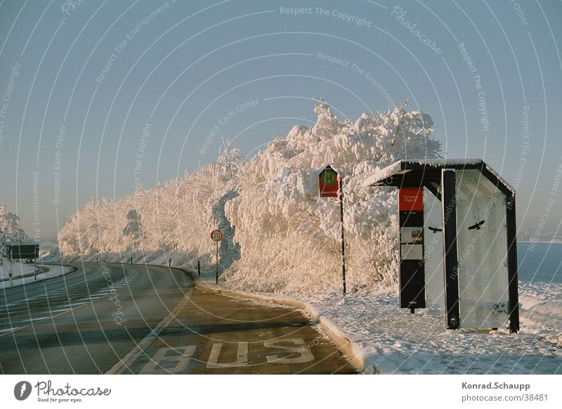 Winter Street Cold Snow Transport Station Bus Hoar frost Bus stop