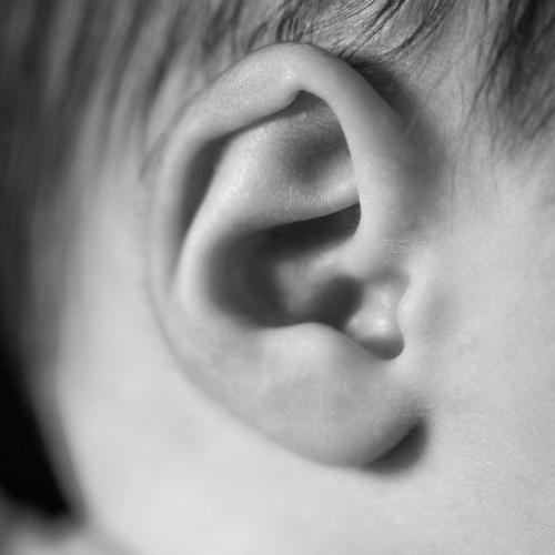 Detail of the ear of a newborn baby detail black and white childhood face pretty toe boy set girl development body healthy young beauty live birth macro