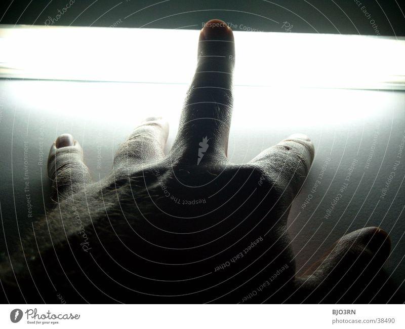 Human being Hand Dark Bright Skin Fingers Wrinkle Neon light Nail Fingernail Photographic technology Middle finger