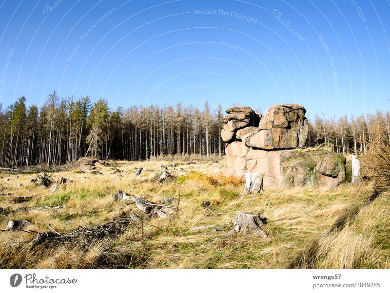 Art in building Master builder Nature topic day Cliff Rock Harz Cliff rock formation Granite Highlands natural monument Saxony-Anhalt Landscape Exterior shot