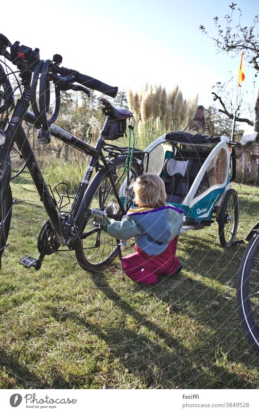 Toddler enthuses about bicycles Bicycle bicycle trailers Curiosity peep take hold of sb./sth. lick chirpy Garden Lawn allotment Garden plot Summer Autumn