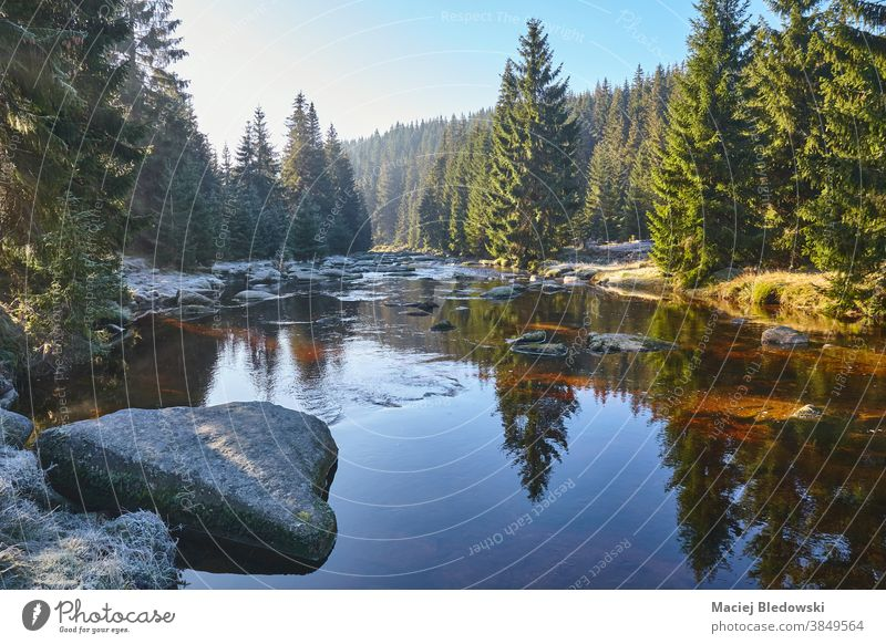 Izera River Valley on a frosty sunny morning, Poland. river valley Jizera mountains nature landscape forest tree sky scenic scenery beautiful travel Sudetes