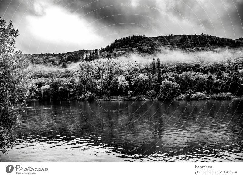 cloud heart Seasons Autumnal Rain Hunsrück Rhineland-Palatinate River bank Mosel (wine-growing area) Moselle valley tranquillity Idyll Adventure Landscape