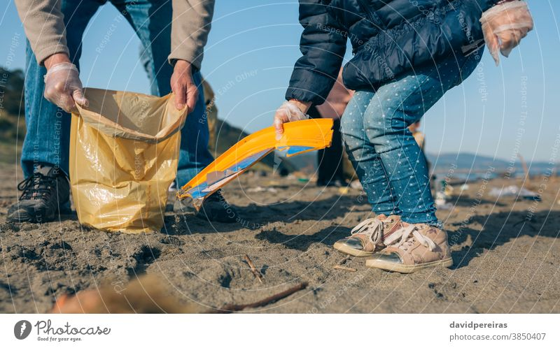 Volunteers cleaning the beach ecological conscience unrecognizable granddaughter grandfather picking up trash helping garbage bags volunteering