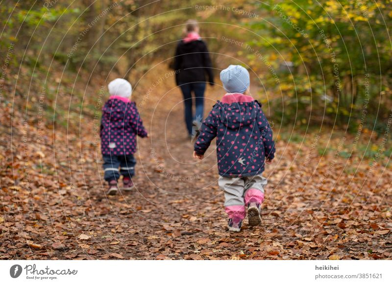 Family outing / forest walk in autumn Autumn Mother Daughter Son mama twins Child Park Forest Trip Nature people persons People Woman fun youthful Love Going
