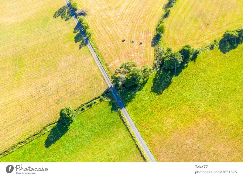 a small country road dividing green meadows road in the nature two meadows divided from above green verge nature from above farming