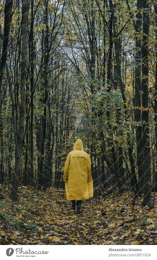 A guy in a yellow jacket walking in the forest in autumn season. Forest Walking Guy Trees Jacket Yellow Moody Dark Nature Rain jacket