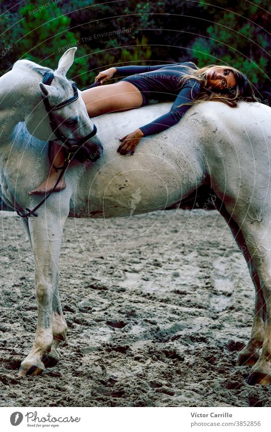 Young beautiful girl with white horse in forest. Woman horseback rider in boho style. Summertime nature scene. Fashion animal attractive beauty caucasian