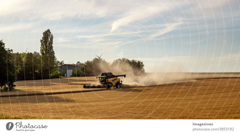Combine harvester working in a wheat field. Rays of the sun, harvesting the wheat. Agriculture. Landscape Panorama Web Banner Wheatfield Sunbeam Harvest