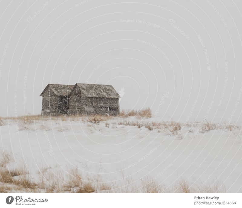 abandoned barns in snowstorm abandoned building Deserted Old vintage rural prairie Snowstorm old architecture farmland Farmhouse