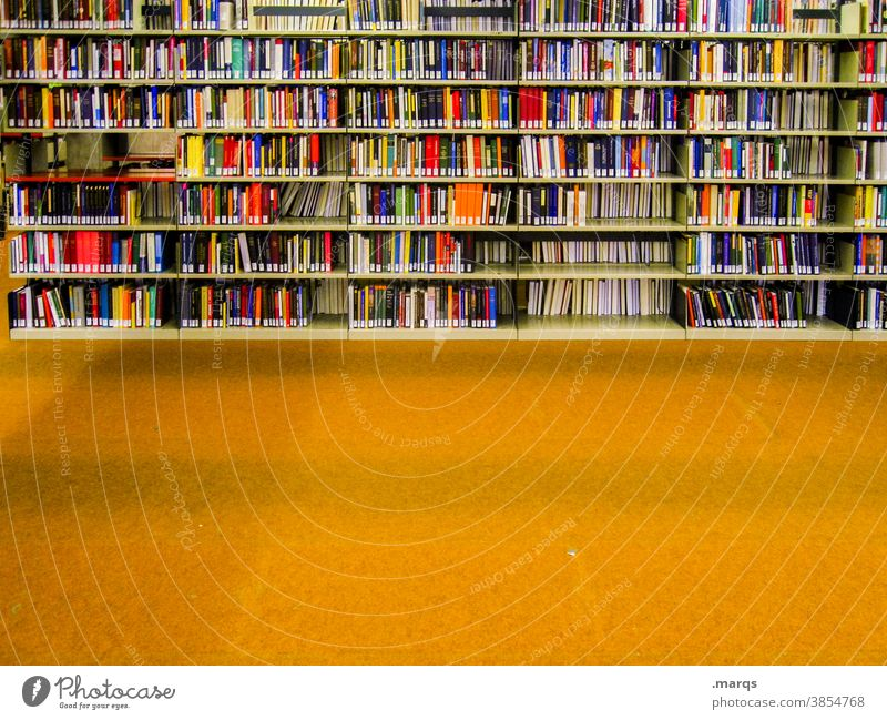 library Education Academic studies Library Book Adult Education Many Arrangement Shelves Study Print media Multicoloured reference book Yellow Floor covering