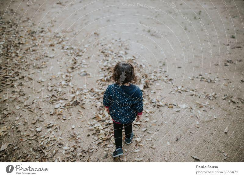 Rear view child walking through autumn leaves Autumn Autumnal Autumn leaves Child childhood Children's game Playing 1 - 3 years Human being Toddler