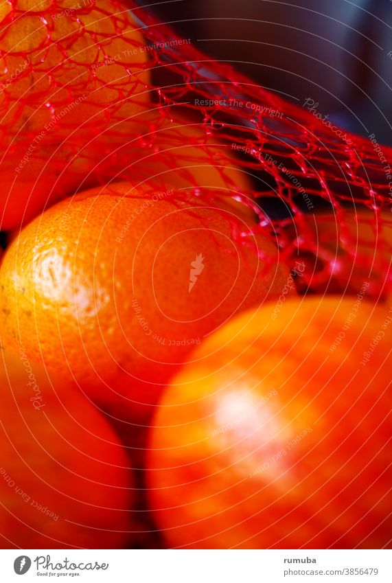 Oranges in the net Net Stripe Striped Detail Day Pattern Colour photo Food Deserted Red eco oranges Healthy fruits vegan salubriously
