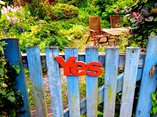 Contemporary History | YES on the Scottish Independence Referendum Scotland choice Campaign Yes in return election advertising Vote policy uk Great Britain