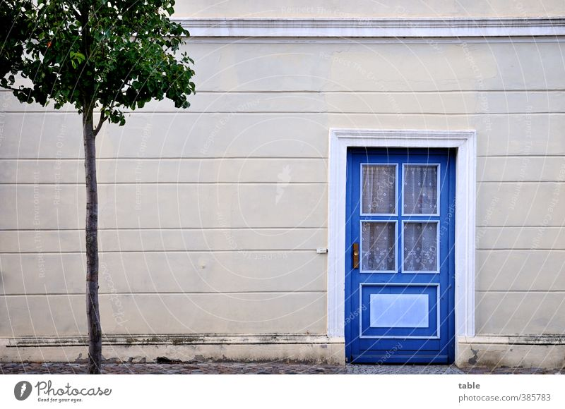 Blue Old City Green Tree Calm House (Residential Structure) Window Wall (building) Wall (barrier) Building Gray Wood Stone Facade Door