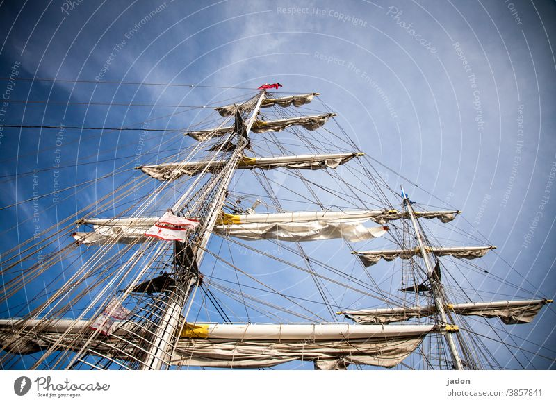 the dream of sailing. Sailing ship Pole Navigation Exterior shot Deserted Sky Vacation & Travel Freedom Sailboat Yacht Ocean Day Blue sky Far-off places