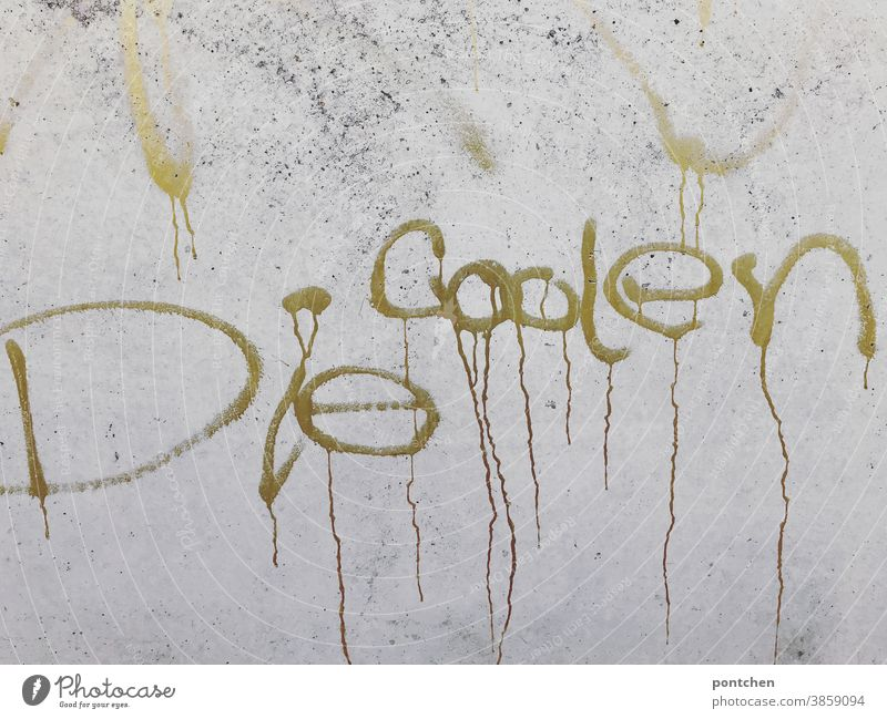 The cool one stands in golden colour on a concrete wall. Graffiti Cool (slang) Youth culture Gold writing Word Characters Letters (alphabet) Typography Text