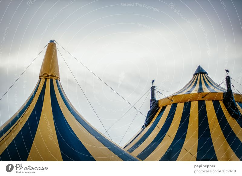 Circus tents Tent Colour photo Sky Fairs & Carnivals Detail Entertainment Shows Exterior shot Event Leisure and hobbies Culture Clouds Yellow Roof Stripe