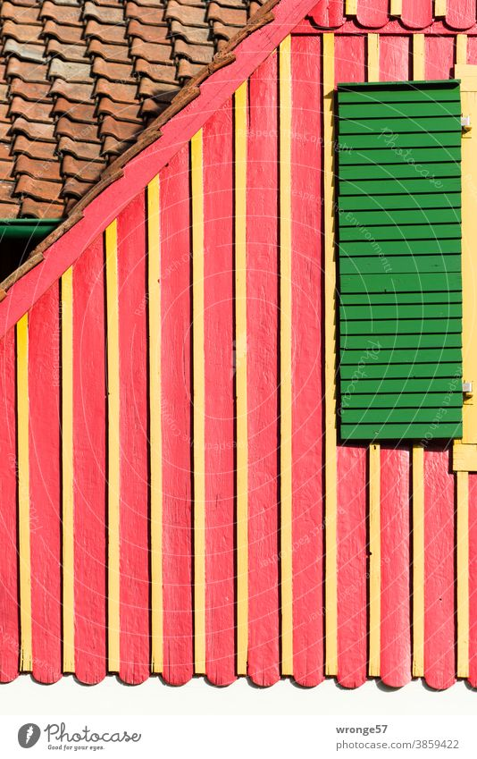 colour combinations   pretty Harz cottage topic day Colour combination variegated Multicoloured Colour photo Deserted Exterior shot Close-up Day