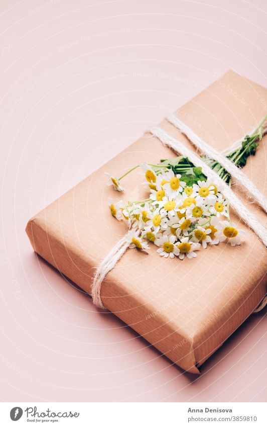 Eco friendly gift wrapped in brown paper wrapping flowers chamomile holiday box present celebration surprise handmade creative mothers day zero waste wedding
