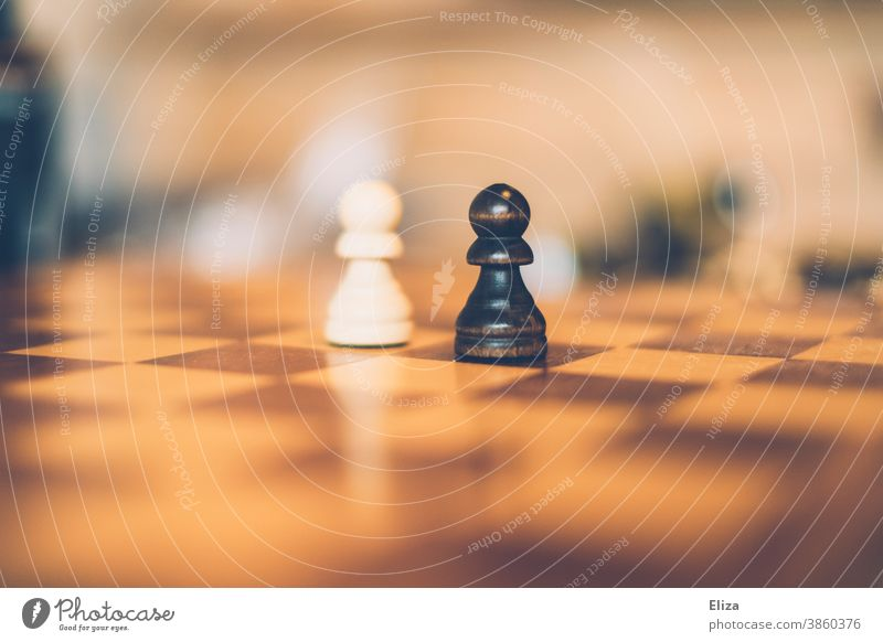 Black against white - Two pawns on a chessboard. Chessboard Chessmen White Figures Racism disparate contrary to skin-coloured Racial equality Racism problem