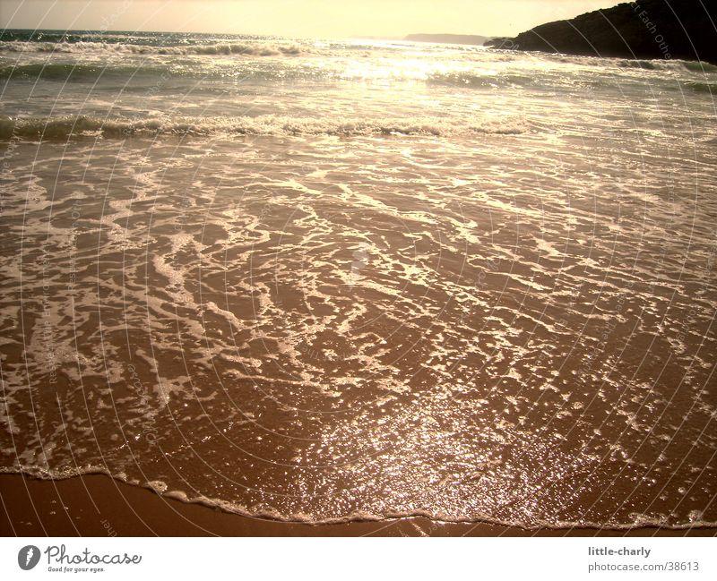 water shimmer Atlantic Ocean Water Glittering Sun
