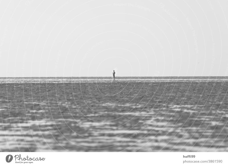 lonesome person at low tide in the Wadden Sea Human being Mud flats Walk along the tideland Exceptional North Sea coast Going by oneself Loneliness Winter Beach