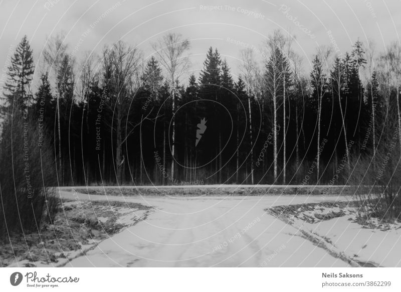 no further way. Roundabout in forest. Arrow background bicycle bike bridge bus business car caution computer concept danger design direction drive highway