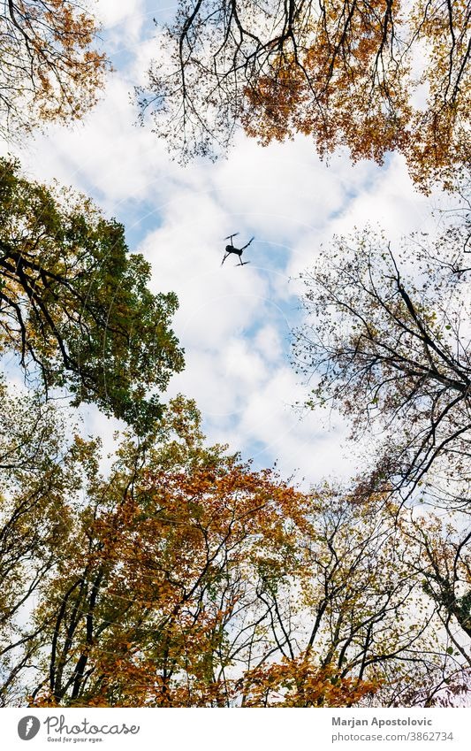 Drone flying over the forest in autumn time adventure aerial air background beautiful blue branch bright cloud clouds colorful day drone environment explore