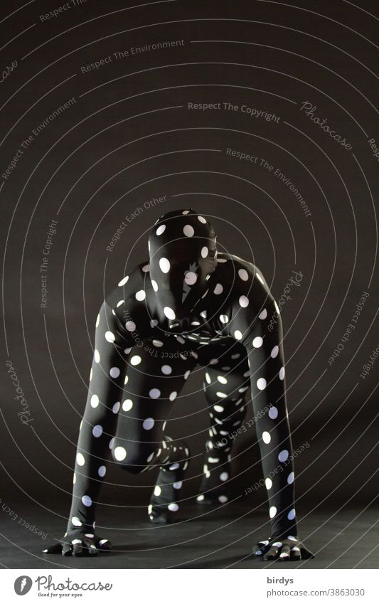 androgynous person in a dotted morph suite costume Climbing take off Body tension Human being Morph Suite spiderman Action points Costume supernatural Anonymous