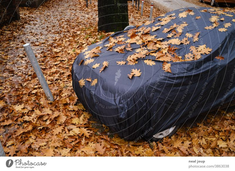 Car under tarpaulin, covered with autumn leaves Autumn Season foliage Parking tranquillity Sleep Sheath Hiding place Camouflage Dark Black Brown Wait Transience